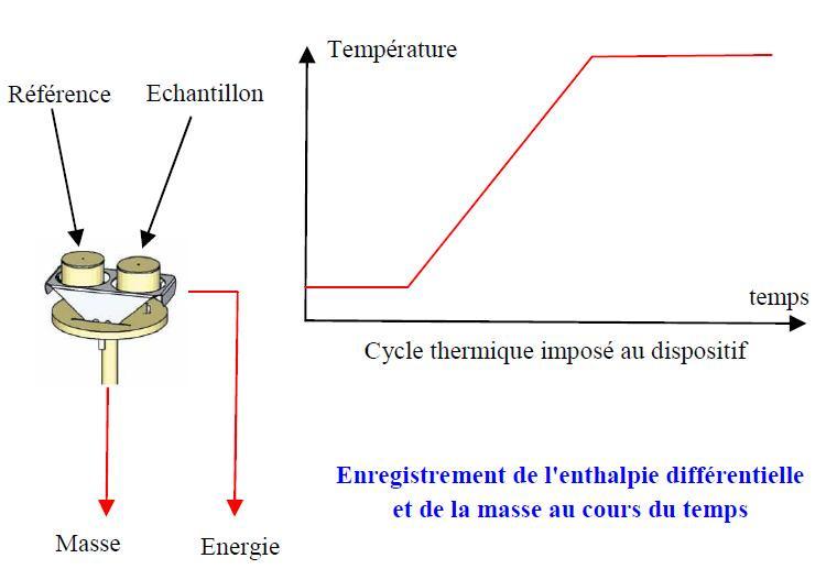 Influtherm Thermogravimétrie principe de mesure